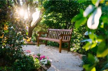 garden_opening_4.JPG