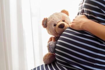pregnant_teddy.jpg
